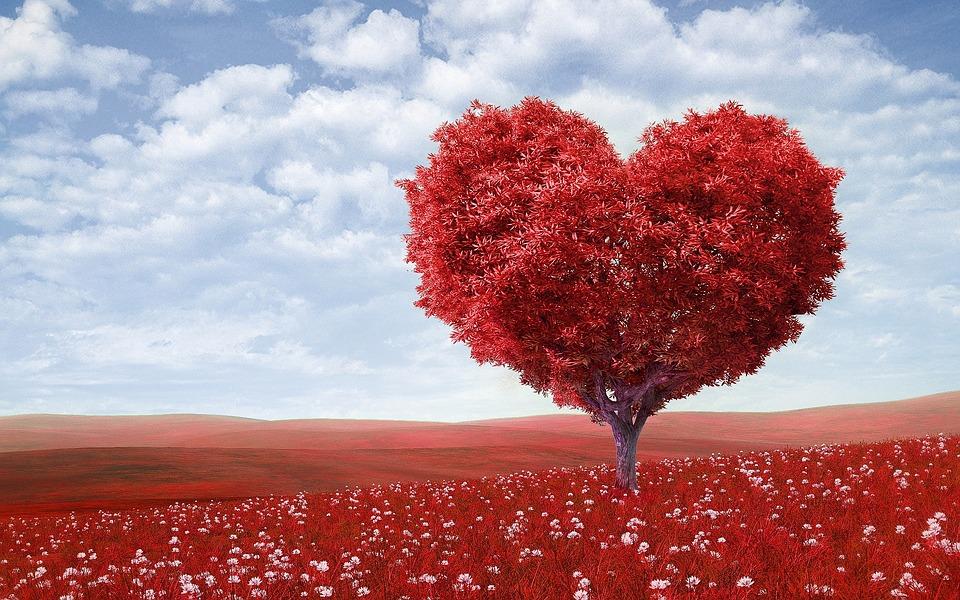 Ce să fac după un infarct miocardic?