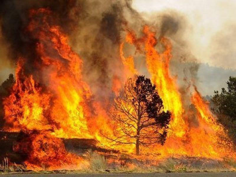 Atenţionare de călătorie transmisă de MAE – Pericol de incendii în Grecia