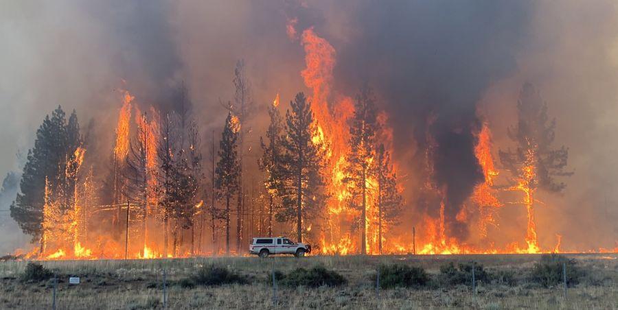 Dezastru în California! Incendiu de vegetație de proporții uriașe