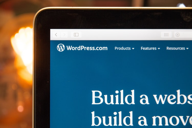 Avantajele si dezavantajele unui website dezvoltat pe platforma WordPress